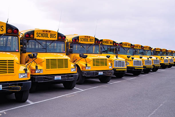 school bus lineup - school buses stock pictures, royalty-free photos & images