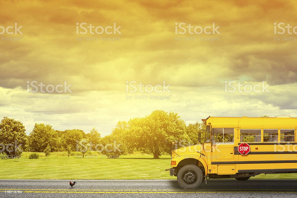 School Bus on american country road in the morning stock photo