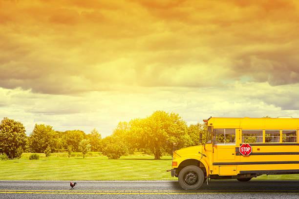 autobús de colegio en american country road en la mañana - autobuses escolares fotografías e imágenes de stock