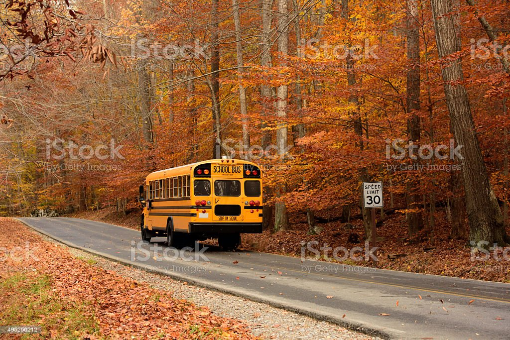 School Bus on Rural road in Autumn stock photo