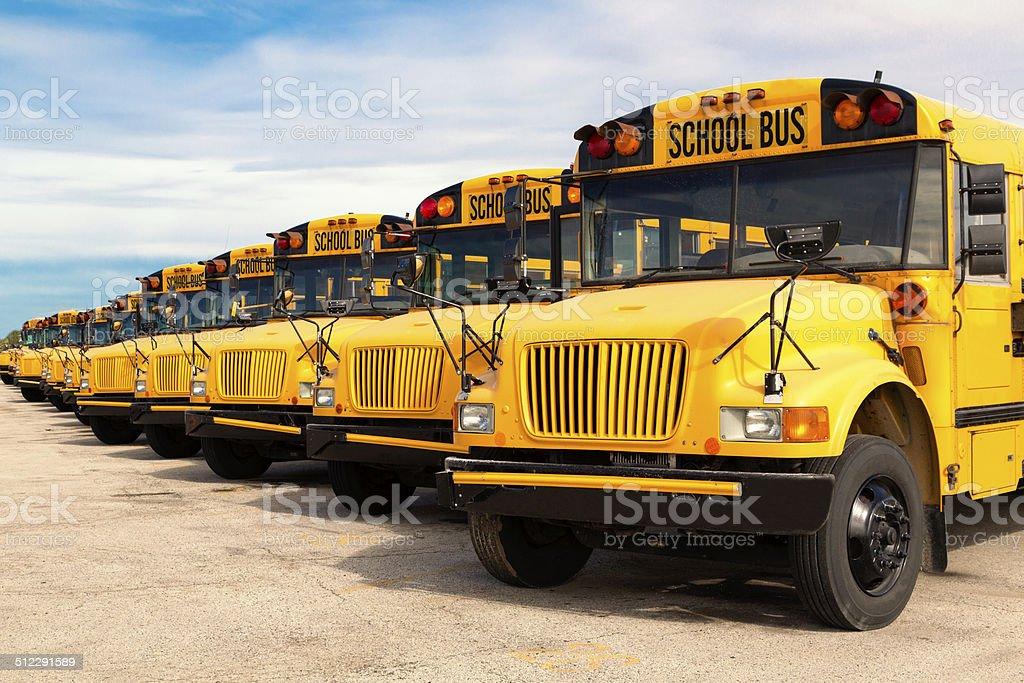 school buses stock photo