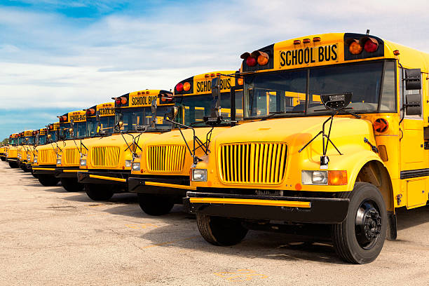 school buses - school buses stock pictures, royalty-free photos & images