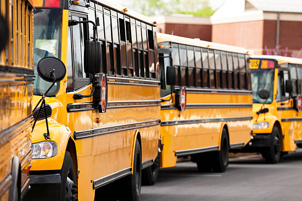 School Busses stock photo