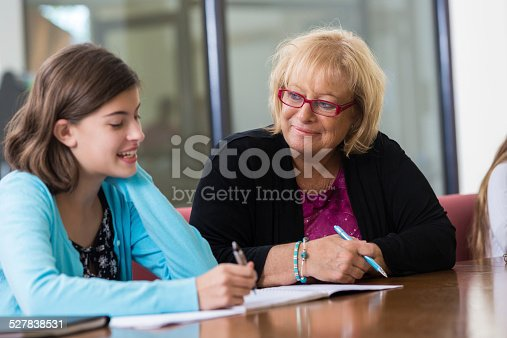 641755828 istock photo School counselor meeting with preteen student for evaluation 527838531