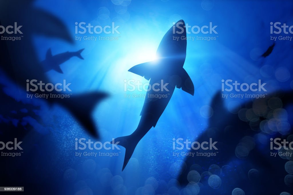 School Of Sharks Under The Waves A school of sharks in the deep blue sea. Mixed media illustration Adventure Stock Photo