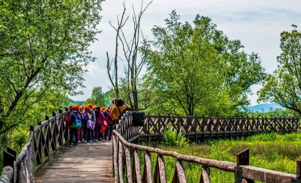 school trip to the nature reserve Posta Fibreno,Lazio,Frosinone,Italy-May 8,2019:group of students on wooden bridge visiting the Posta Fibreno nature reserve on a sunny spring day field trip stock pictures, royalty-free photos & images