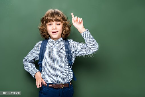 1016623732istockphoto schoolboy showing idea gesture near blackboard 1016623686