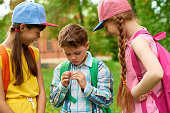 Adorable kids smiling and looking at small flower while standing on schoolyard after studies