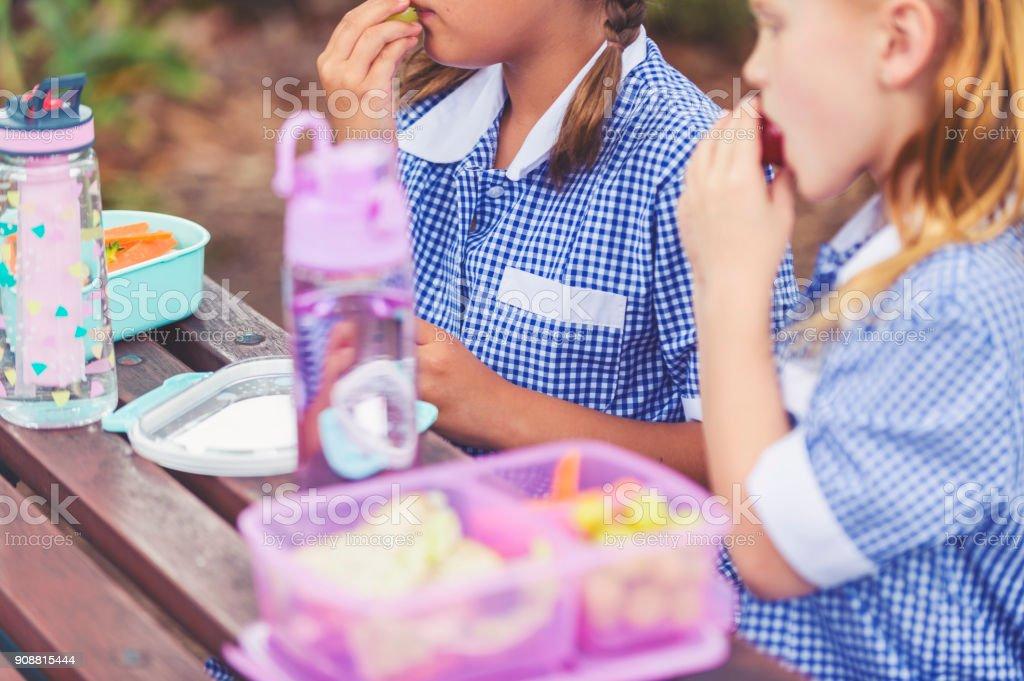 Schulmädchen essen ein gesundes Mittagessen. – Foto