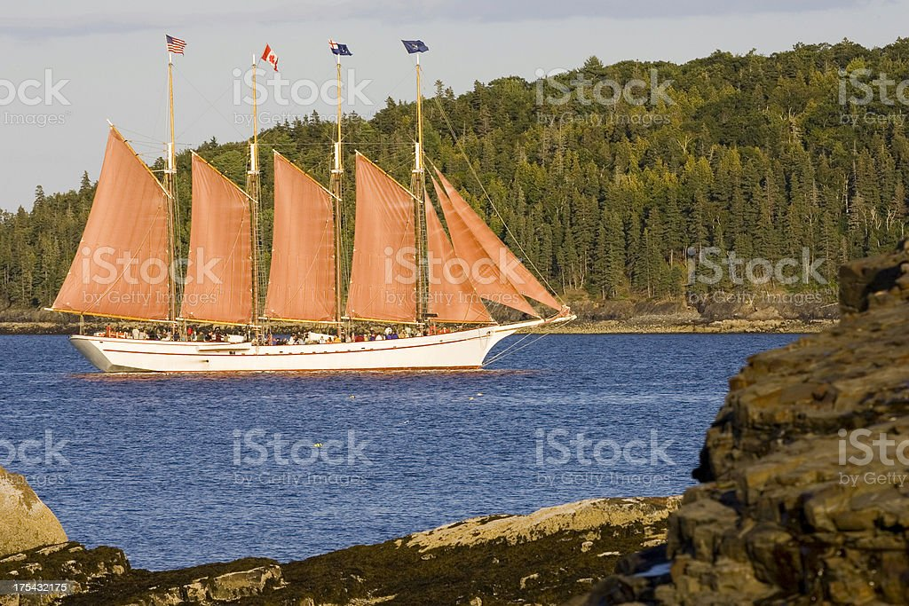 Schooner sails through channel in Frenchman Bay stock photo