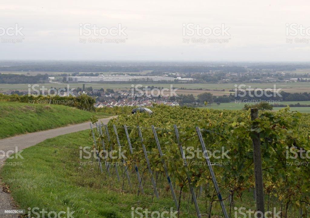 Schutterlindenberg to Rheinebene view stock photo