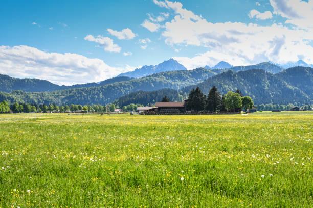 Schwangau in the bavarian alps – Foto