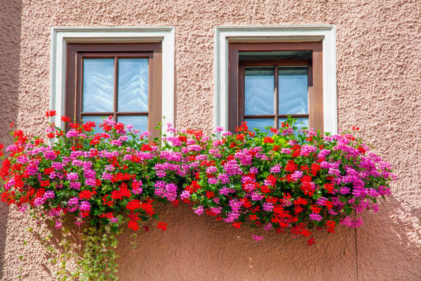Schwarzwald Germany windows of the house with flowers. stock photo