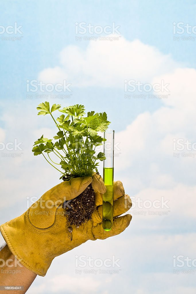 Science and Nature royalty-free stock photo