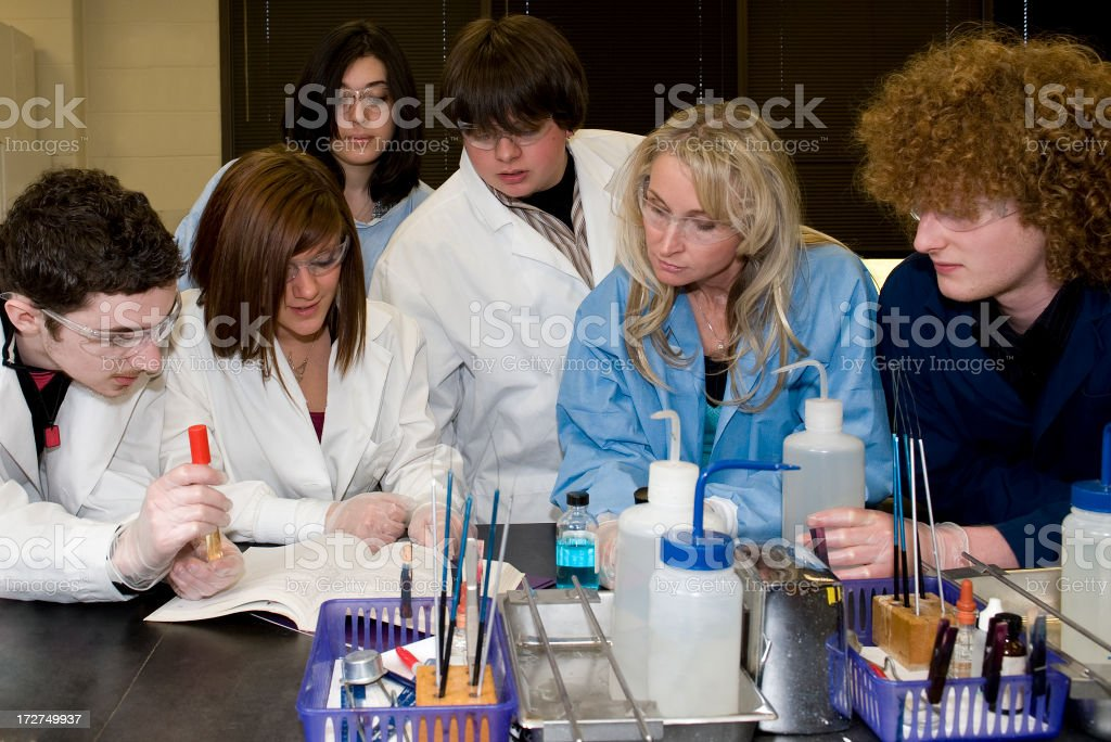 Science Class royalty-free stock photo
