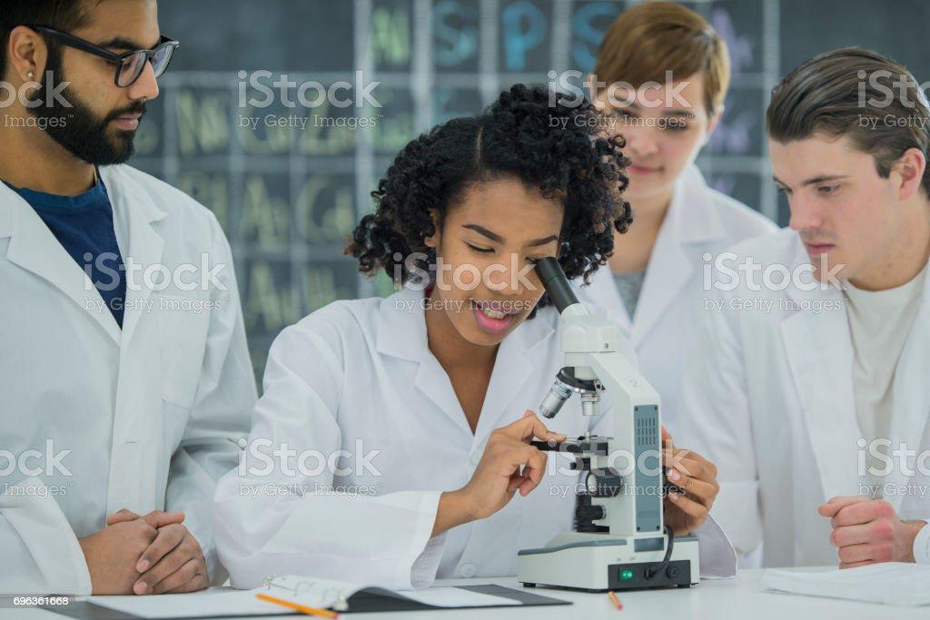 Science expérience - Photo