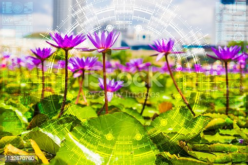 1045841966istockphoto Science flower chaotic city 1132670760