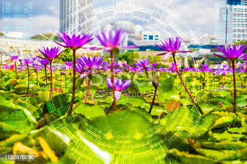1045841966istockphoto Science flower chaotic city 1132670790