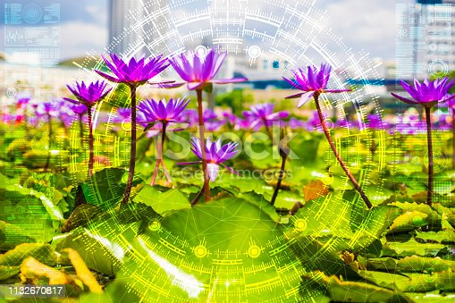 1045841966istockphoto Science flower chaotic city 1132670817