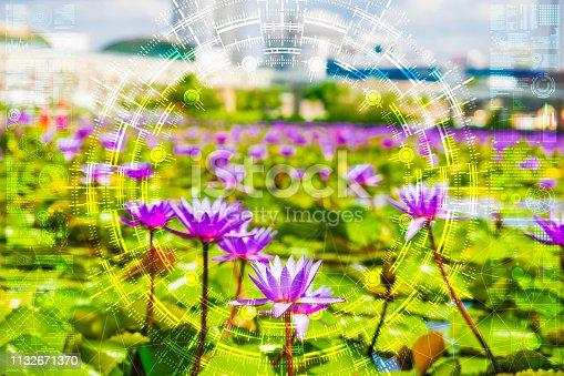 1045841966istockphoto Science flower chaotic city 1132671370