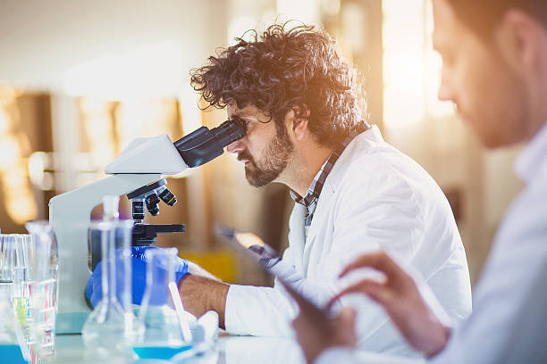 science lab - medical research stock photos and pictures