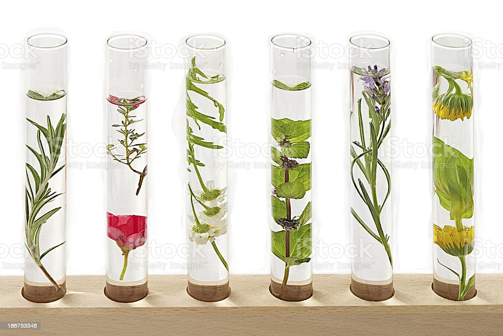 Science /Medecine- solution of medicinal plants and flowers royalty-free stock photo