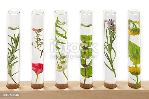 istock Science /Medecine- solution of medicinal plants and flowers 186753346