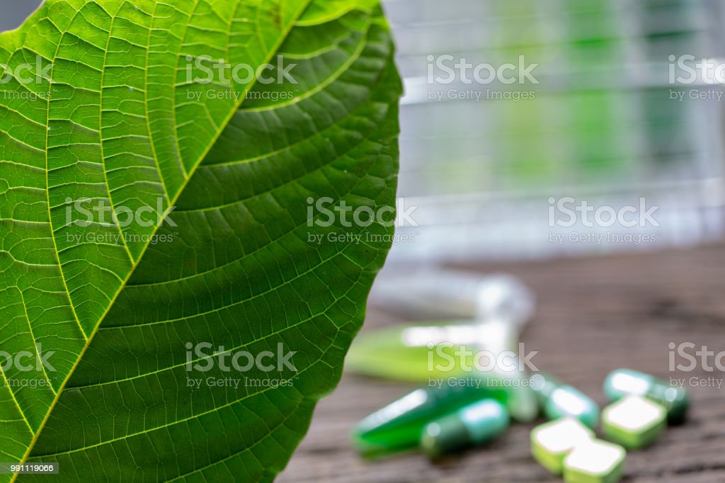 Science Research leaves of Mitragyna speciosa , Science Research drug...