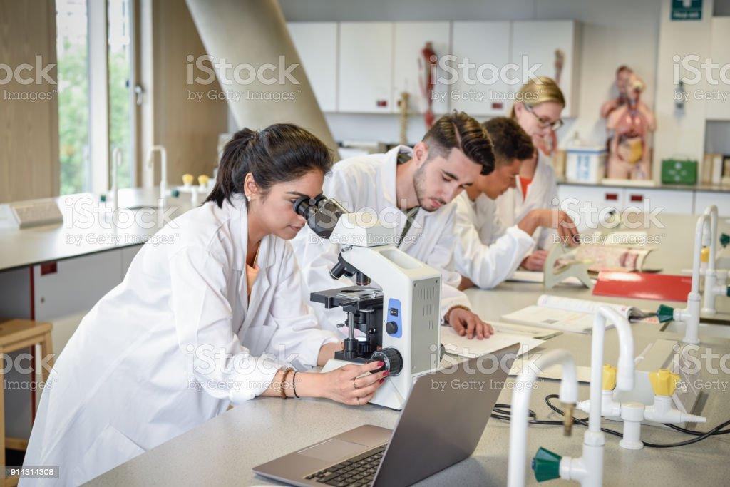 Science students in laboratory using microscopes, laptop on workbench stock photo