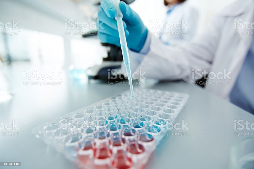 Scientific analysis stock photo