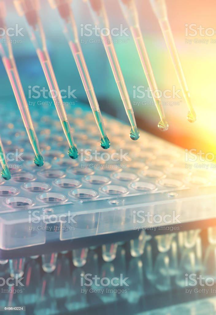 Scientific background. Multichannel pipette tips for DNA analysis stock photo