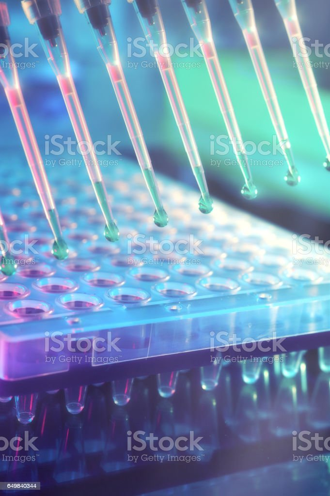 Scientific background. Multichannel pipette tips for DNA analysis. stock photo