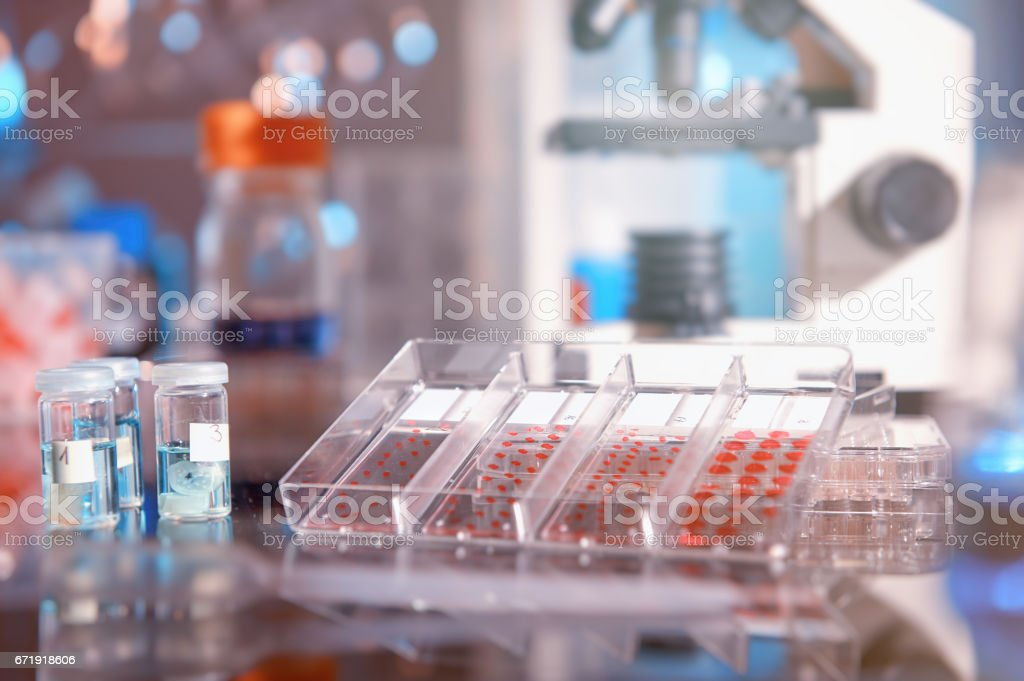 Scientific background with modern histopathology tools stock photo