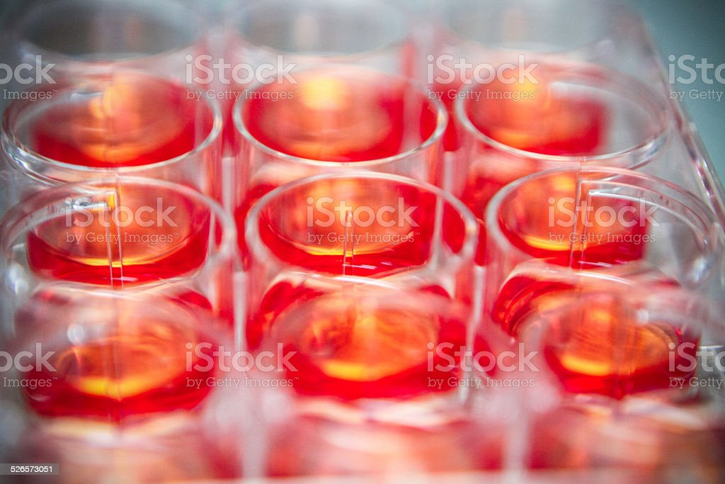 Scientific Cell Research - DNA and Stem Cell stock photo