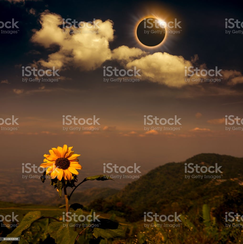 Scientific natural phenomenon. Total solar eclipse with diamond ring effect. stock photo