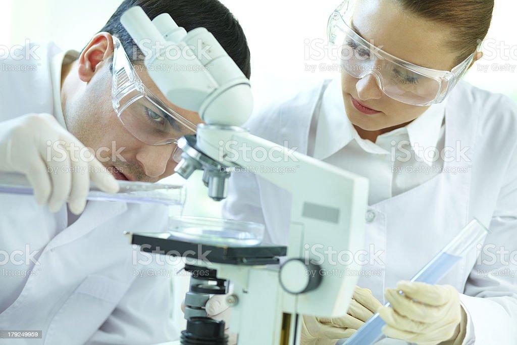 Scientific scrutiny royalty-free stock photo