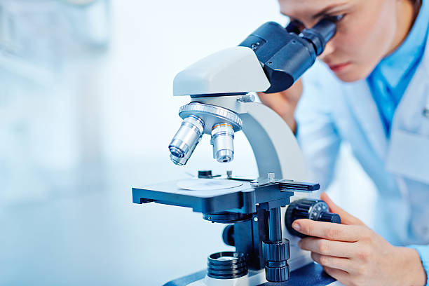 scientific studies - microscope stock photos and pictures