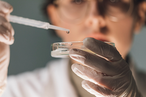 Female lab technician working with strains of bacteria grown in petri dishes.