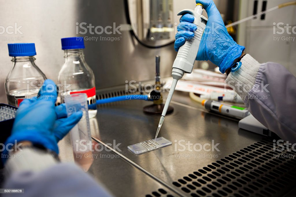scientist analising test tube 2 stock photo