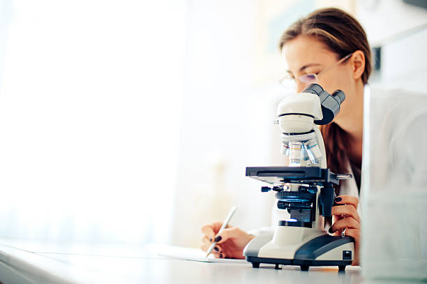 scientist at work - microscope stock photos and pictures