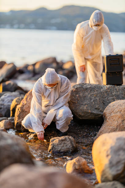 Scientist collecting water sample at the seashore stock photo