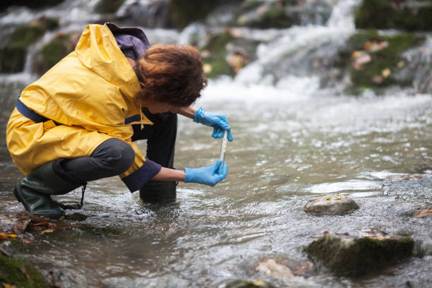 Scientist Ecologist Taking a Water Sample in the Forest Scientist Ecologist Taking a Water Sample in the Forest environment stock pictures, royalty-free photos & images