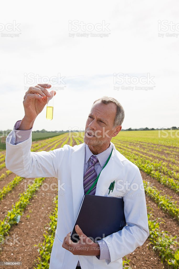 Scientist examining liquid in test tube outdoors royalty-free stock photo