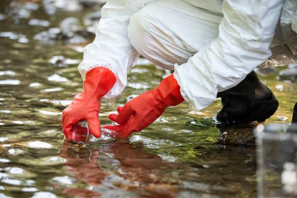 Scientist examining toxic water samples