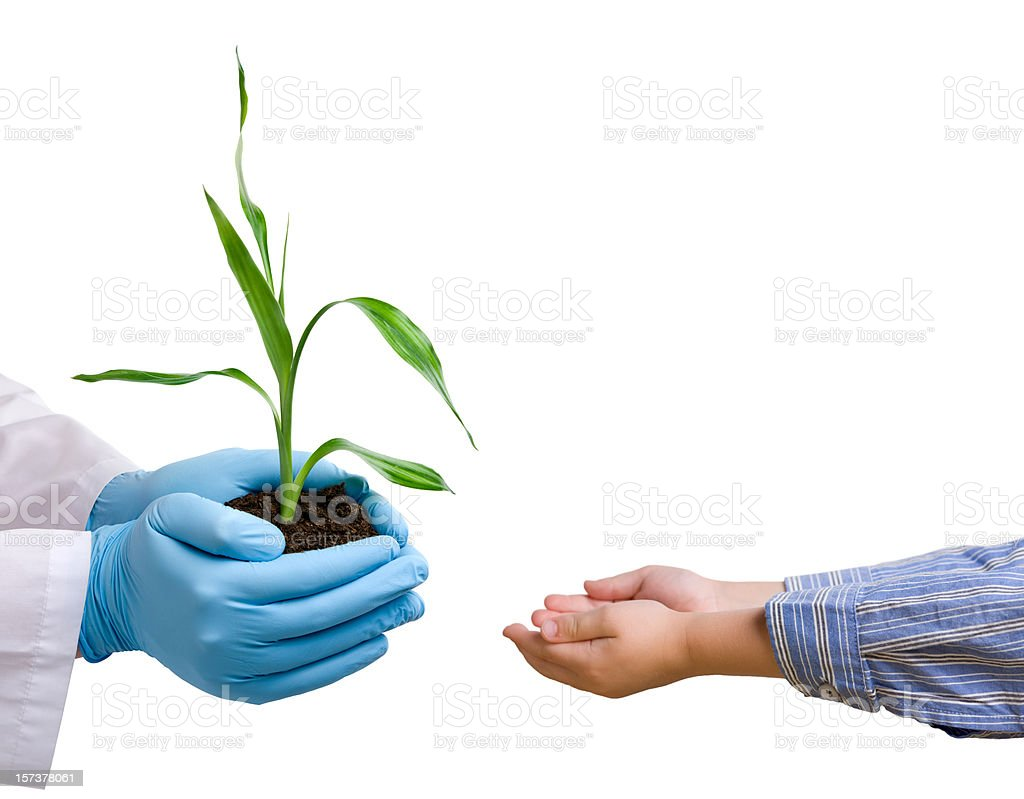 Scientist giving a plant to child royalty-free stock photo