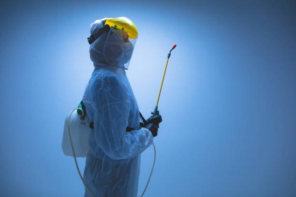 Scientist holding chemical sprayer for sterilization and decontamination of viruses, germs, pests, infectious diseases. Scientist holding chemical sprayer for sterilization and decontamination of viruses, germs, pests, infectious diseases. decontamination stock pictures, royalty-free photos & images