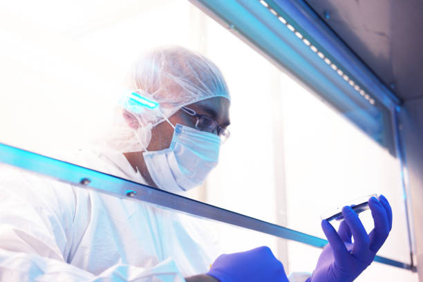 Scientist in a clean room Scientist in clean room laboratory cleanroom stock pictures, royalty-free photos & images