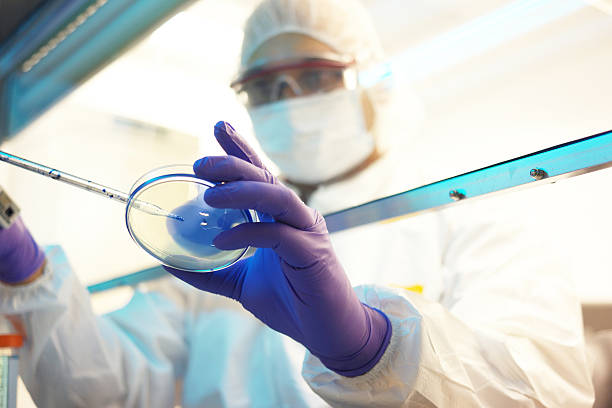 Scientist in a laboratory stock photo