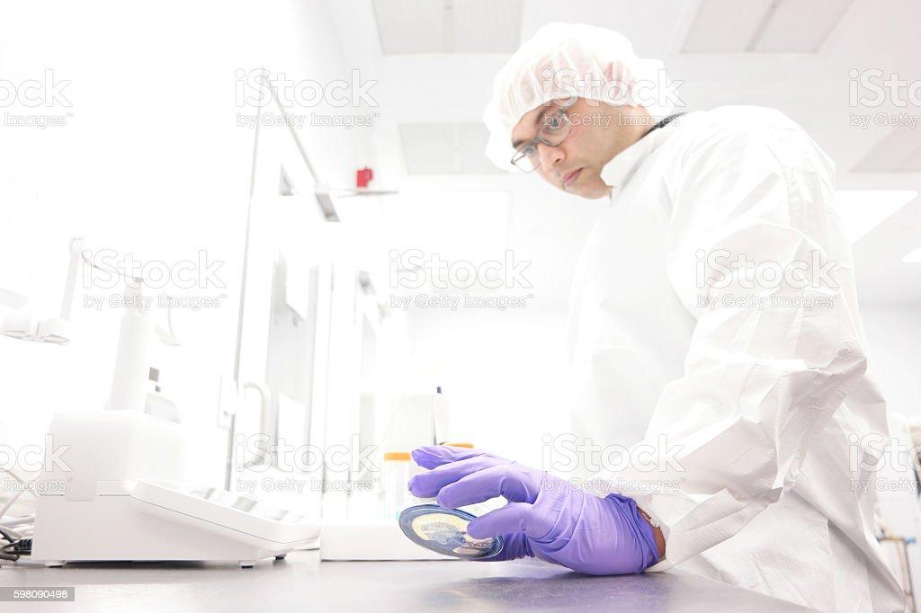 Scientist in a laboratory stock photo