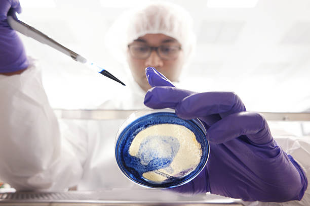 scientist in a laboratory - white suit stock photos and pictures